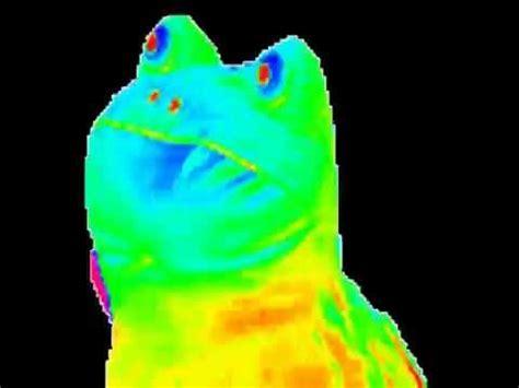 Frog Meme - rainbow frog gif youtube
