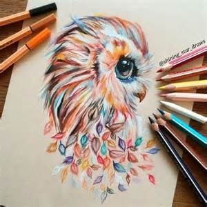 cool colorful drawings eagle creativity drawing owl image 4144789 by