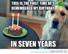dog birthday quotes quotesgram