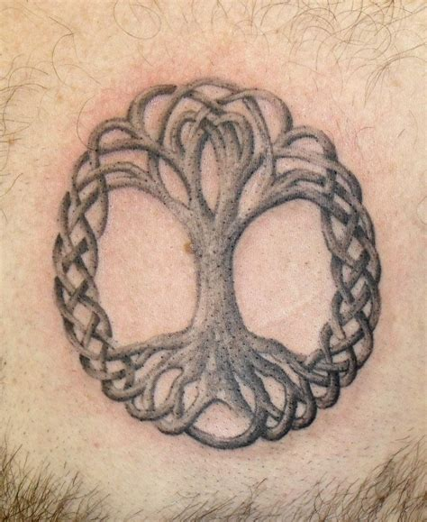 Celtic Tree Tattoo By Onksy On Deviantart Celtic Tree Tattoos Designs 3