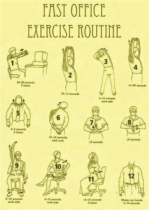 Office Desk Exercises 17 Best Images About Office Workout Routines On