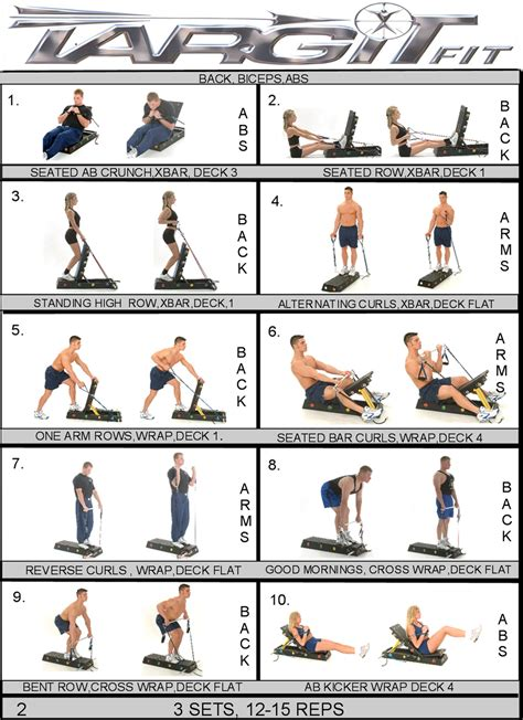 bicep workouts chart for images