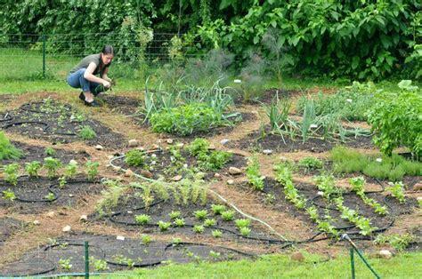 Urban Soup Kitchen - put on the pottage authentic renaissance garden flourishes in amherst