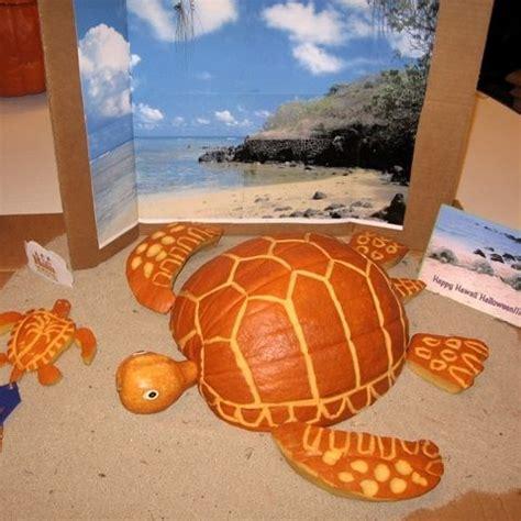 coastal pumpkin ideas sand and sisal