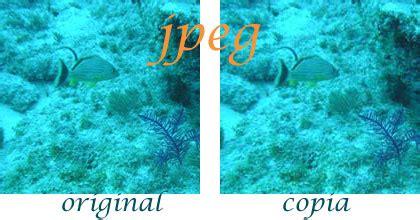imagenes con formato jpg archivos de imagen digital con formatos jpg y jpeg