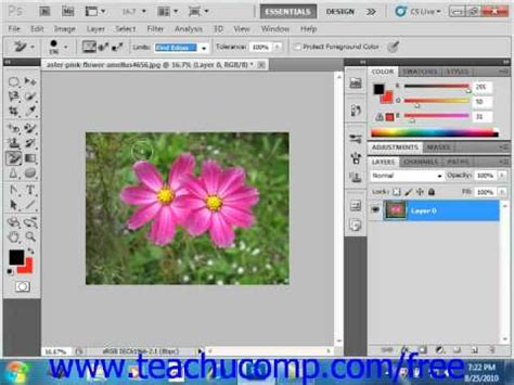 photoshop cs5 x ray tutorial photoshop cs5 tutorial the background eraser tool adobe