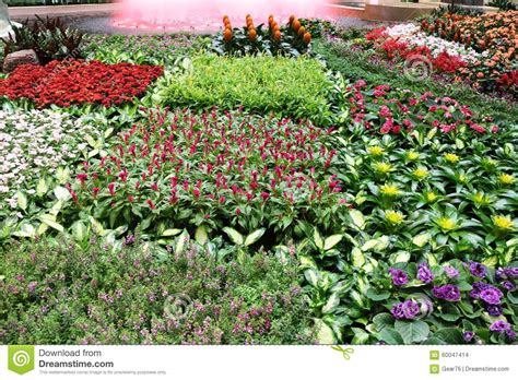 Bed Of Flowers by Bed Of Flowers Stock Photo Image 60047414
