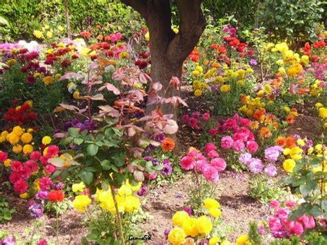 imagenes de paisajes florales paisajes naturales florales imagui