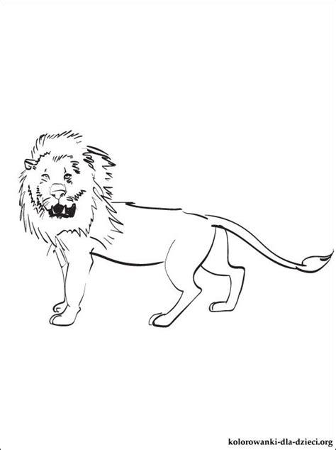 kolorowanka lew  wydrukowania kolorowanki dla dzieci