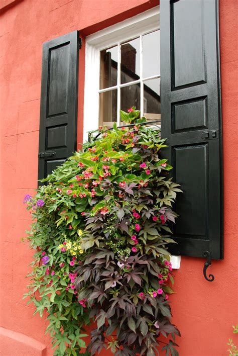 hanging window flower boxes 40 window and balcony flower box ideas photos