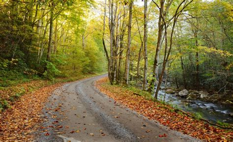 Which Wears Smoky Better by Things To Before You Drive Through The Smoky Mountains