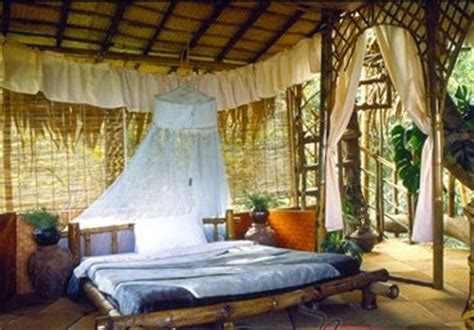 tree house bedroom creek n crag hotel india the most hotels in trees in the world