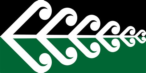 design art college of new zealand the silver fern new zealand s new flag the flag institute