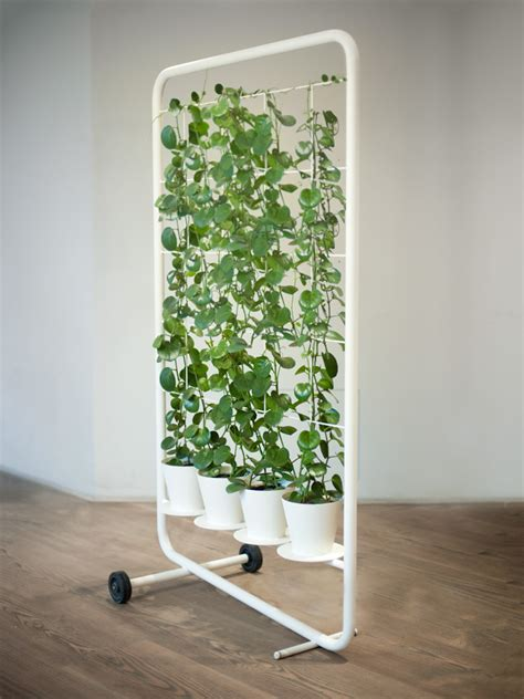 plant room divider 10 amazing benefits of eco friendly living wall partitions