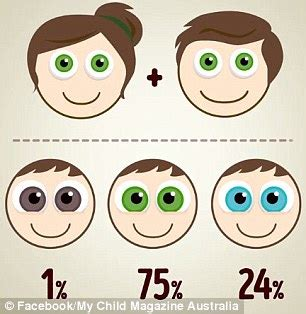 infant eye color the eye colour combinations your baby could based on