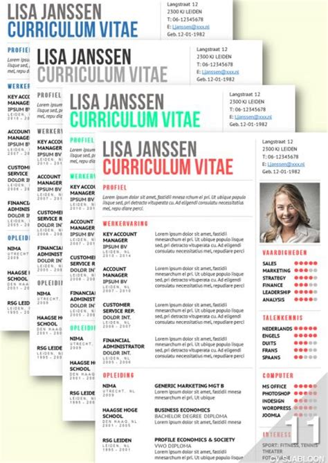 Cv Sjabloon Word 2013 Downloaden 52 Best Images About Cv Advies En Ontwerp De Leydsche On Template Infographic