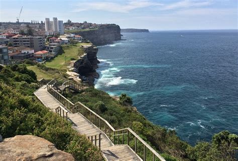 Federation Cliff Walk   Best Sydney Walks