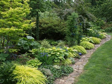 Plants For Formal Gardens - photo 23264 hakonechloa macra aureola plant lust