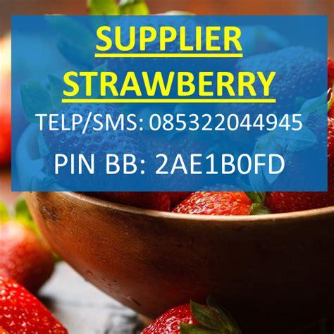 Tempat Jual Bibit Strawberry jual strawberry di bandung harga murah distributor grosir