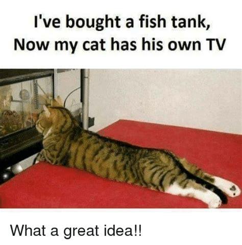 Bro Tank Meme - 25 best memes about fish tank fish tank memes