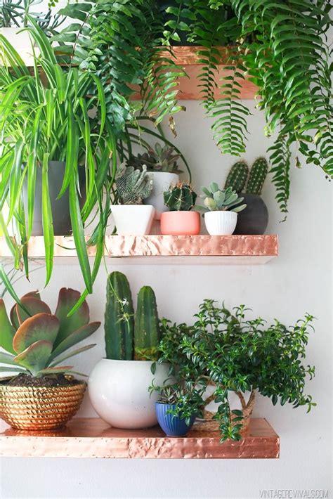 loft living room sources house plants backyard