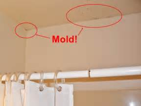 good Mold On Bathroom Walls #2: mold1.JPG