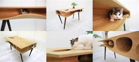 Diy Cat Bed Modern Design Ideas For Our Furry Friends Studio Mm