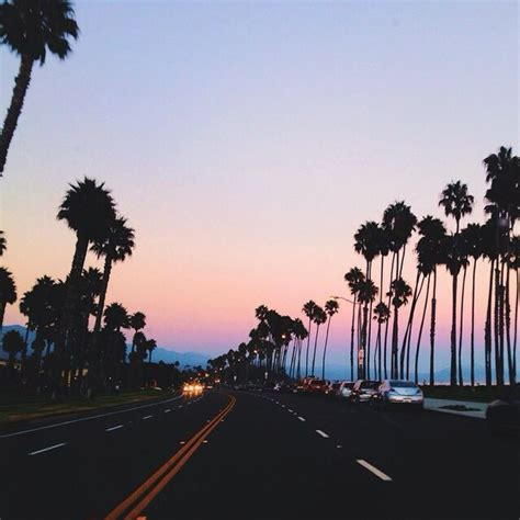 goodvibes aesthetic palmtrees sunset hipster image