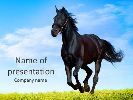 powerpoint templates free download horse horse powerpoint template black horse powerpoint template