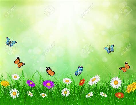 background design of nature daisy vector background summer design flower green garden