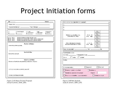 project initiation template the project management process week 2