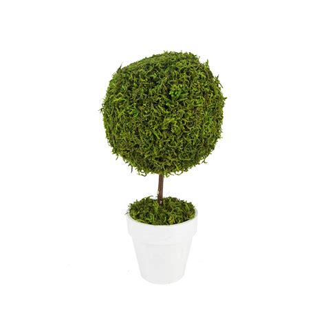 topiary moss 15 5 quot green reindeer moss potted artificial