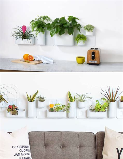 stick things to wall indoor garden idea hang your plants from the ceiling
