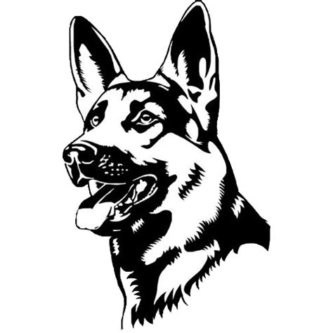how to a k9 image gallery k9 drawing