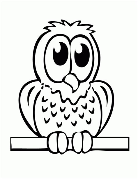 baby owl coloring page h m coloring pages
