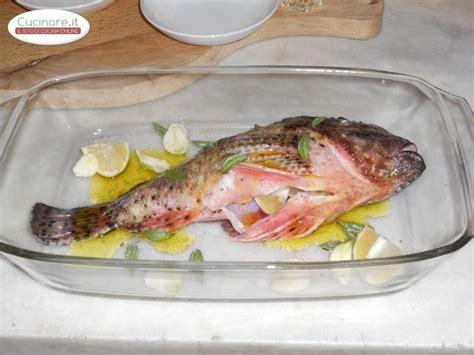 cucinare lo scorfano al forno scorfano al forno cucinare it