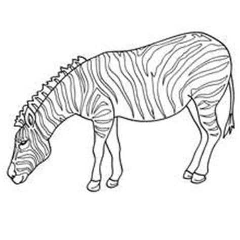 aardvark to zebra animals of africa coloring book books zebra picture coloring pages hellokids