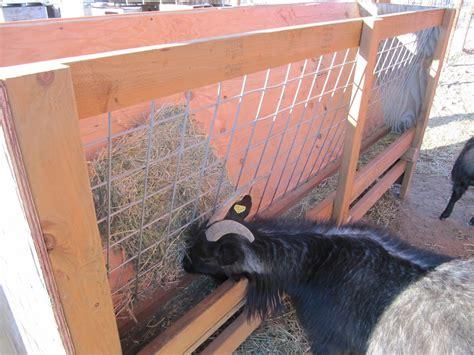 Goat Hay Feeder Designs liberty farm goats new hay feeder