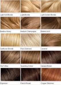 shades of hair color chart 2015 color shades for hair vpfashion