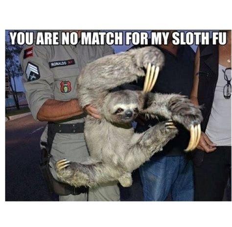 rape sloth images  pinterest