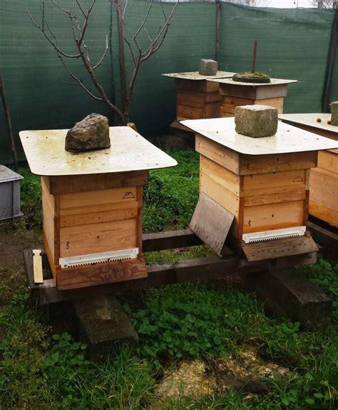 imkerverein mainz geschleudert meist ger 252 hrt honig aus ingelheim
