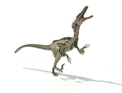 5 Erreurs Scientifiques Dans Jurassic World Sciences Et
