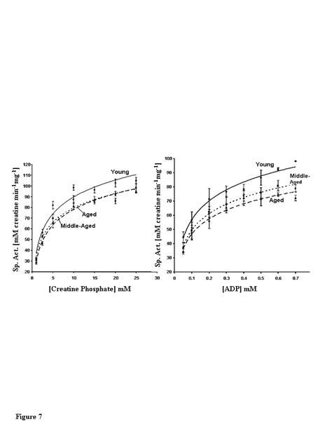m line creatine kinase aging oxidative modification and aggregation of creatine