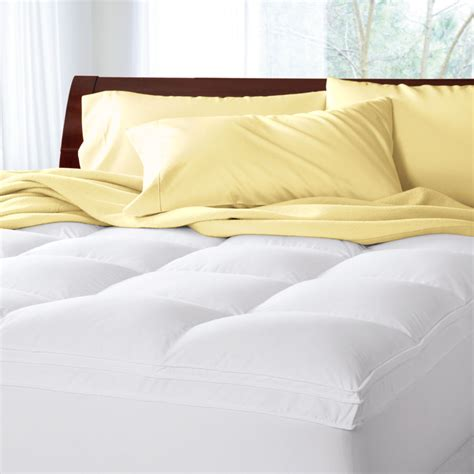 best bed pillows to buy twin pillow top mattress sale trump luxury size