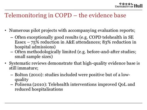 pilot project evaluation report template alyn morice hull wsdan 30 june 2011