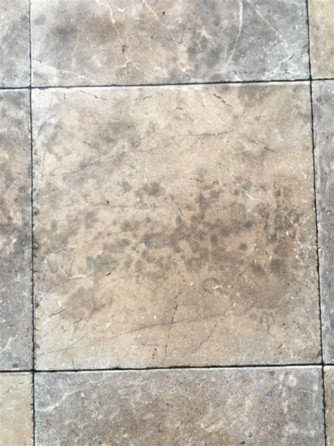 removing mold from hardwood floors removing mold stains from linoleum floor thriftyfun