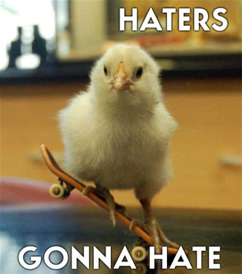 Haters Gon Hate Meme - image 249514 haters gonna hate know your meme