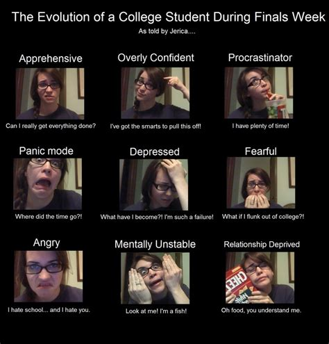 College Student Meme - 106 best cus humor images on pinterest