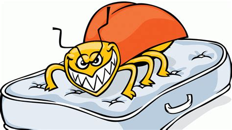 bed bug cartoon analysis bed bugs on board business traveller the
