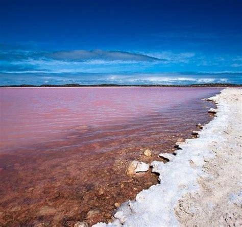 pink lake australia wanderlust wednesday pink lake hillier 187 travelfied